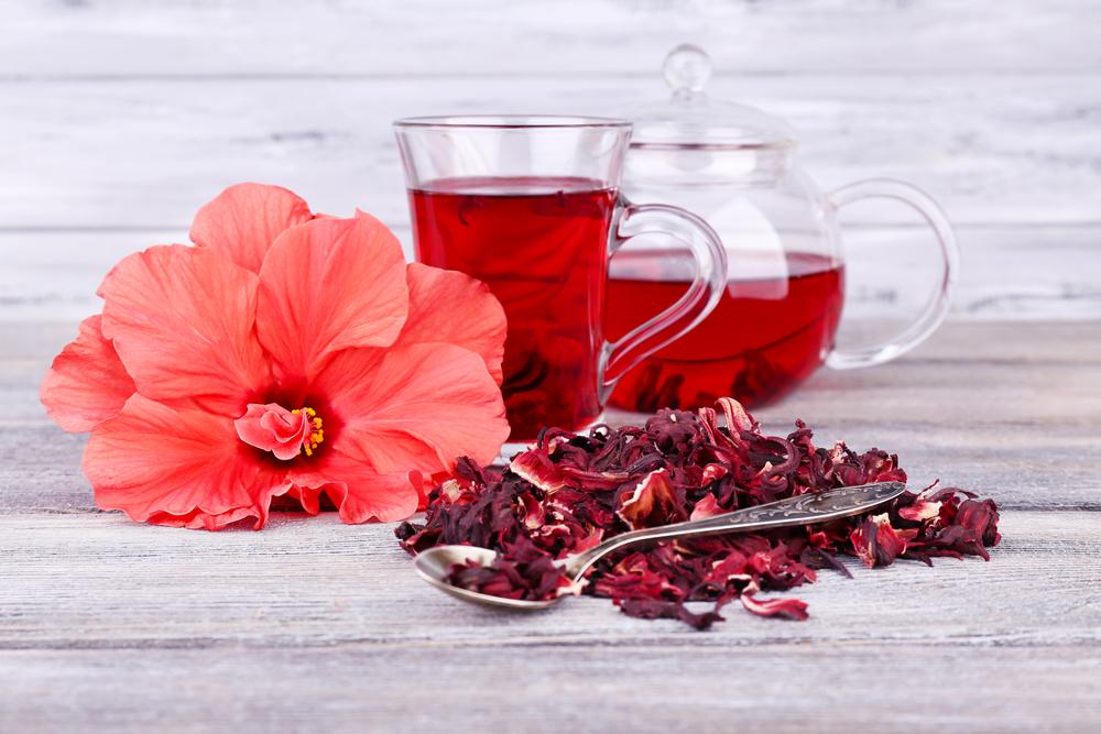 06_hibiscus_204655327