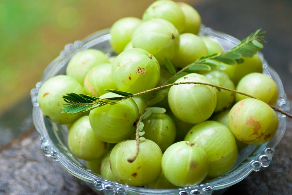 インド発、究極の若返り果実と呼ばれる「アムラ」に大注目!
