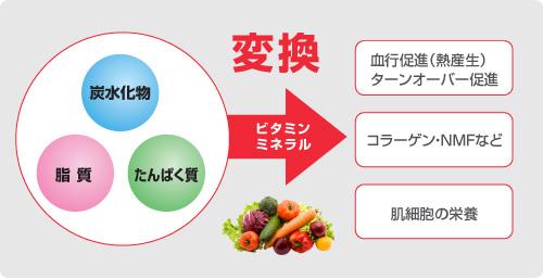 きれいな素肌のための野菜・フルーツの摂り方