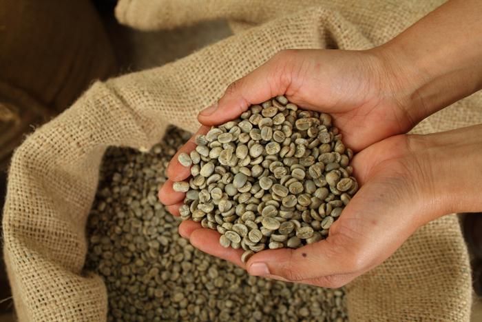 ダイエットの味方「緑色のコーヒー豆」
