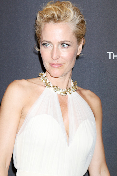 Gillian Anderson/ Kathy Hutchins / Shutterstock.com