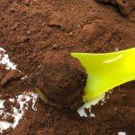 腸内環境を整える発酵食品で健康&美肌に【バレンタイン編】「酒粕チョコトリュフ」