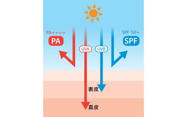 紫外線・シミ・くすみ対策を徹底解説! VOL.2 体の外から編
