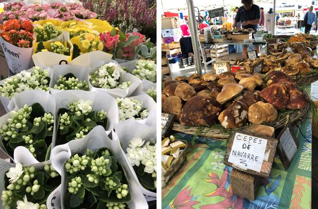 カラフルな可愛い花(左上写真)やさまざま種類のマッシュルームも(右上写真)!
