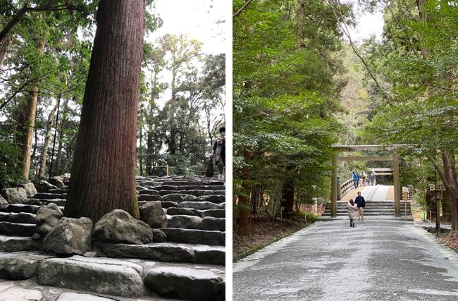 樹齢400年の杉の木(左上写真)と絵になる風日祈宮橋(右上写真)